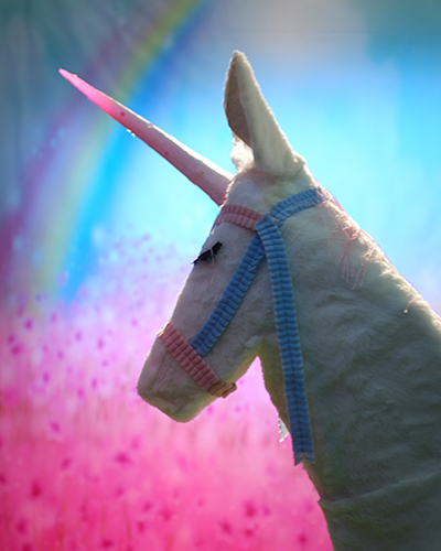 Unicorn, Sue de Beer